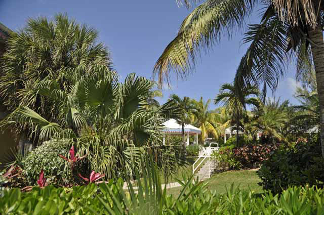 Coconut Bay - The tropical gardens