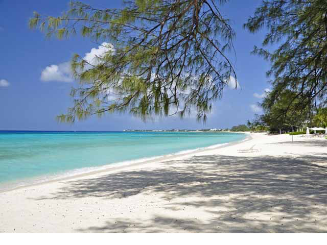 Seven Mile Beach - Casuarina trees provide shade